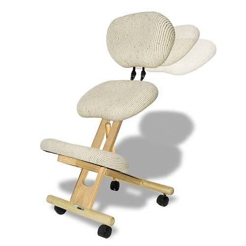 Cinius Chaise ergonomique professionnelle avec dossier